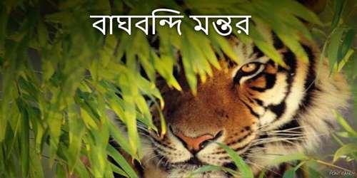 বাঘবন্দি মন্তর